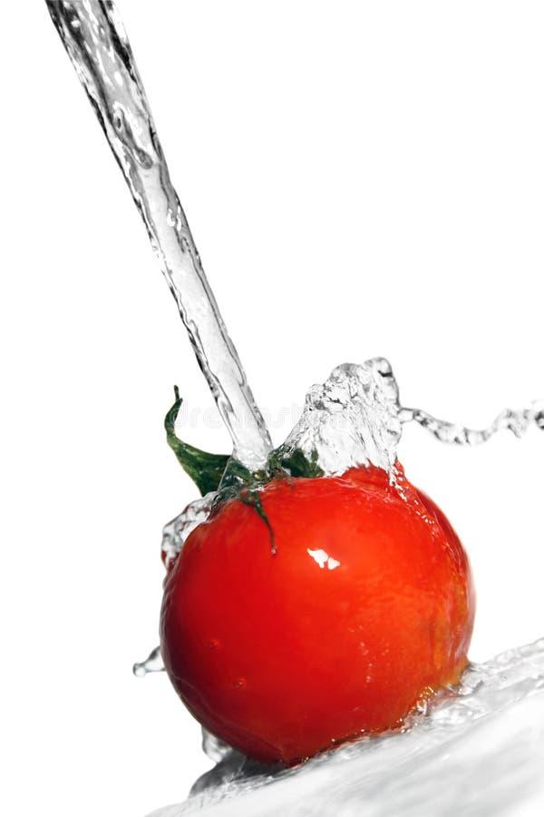 pomidor woda fotografia stock