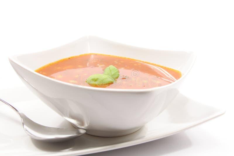 pomidor zupny pomidor obraz stock