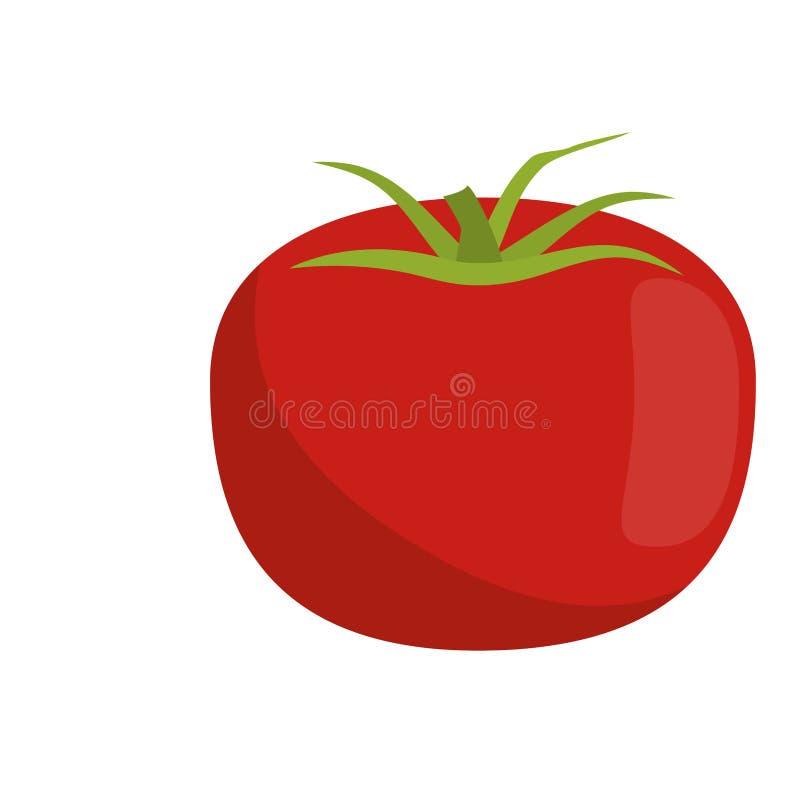 Pomidorowa jarzynowa świeża żywność ilustracja wektor