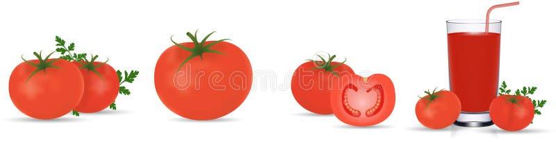 Pomidorowa kolekcja Fotografia realistyczni ?wiezi czerwoni dojrzali pomidory z ziele? li??mi odizolowywaj?cymi na bia?ym tle 3d  ilustracja wektor