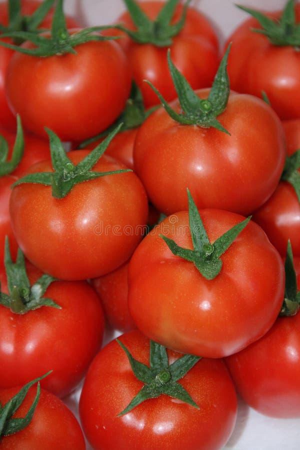 Pomidorowe owoc zdjęcia stock
