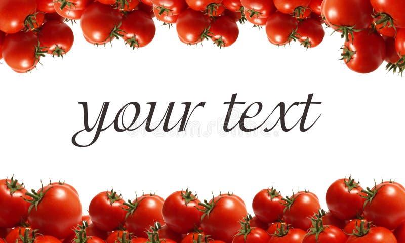 pomidorowi najlepszi stopień fotografia stock
