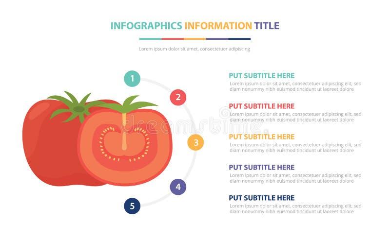 Pomidorowy infographic szablonu pojęcie z pięć punktami spisuje i różnorodny kolor z czystym nowożytnym białym tłem - wektor ilustracja wektor