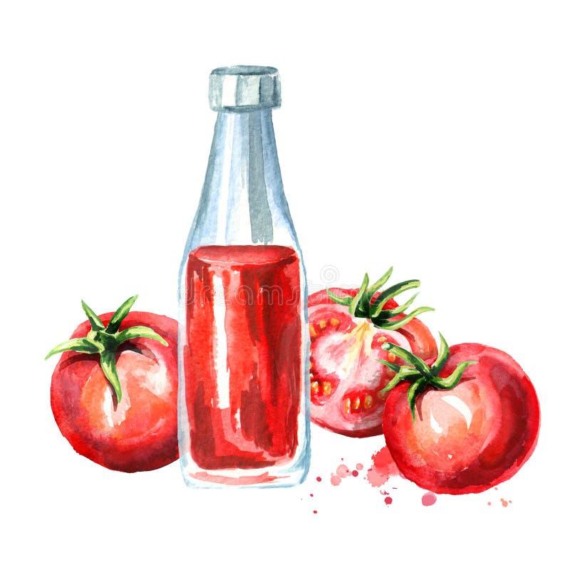 Pomidorowy ketchup z dojrzałymi czerwonymi pomidorami Akwareli ręka rysująca ilustracja, odizolowywająca na białym tle royalty ilustracja