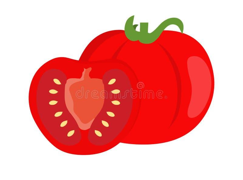 Pomidorowy wektor Świeża pomidorowa ilustracja royalty ilustracja