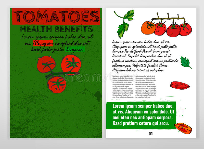 Pomidorowy wektorowy wizerunek ilustracji