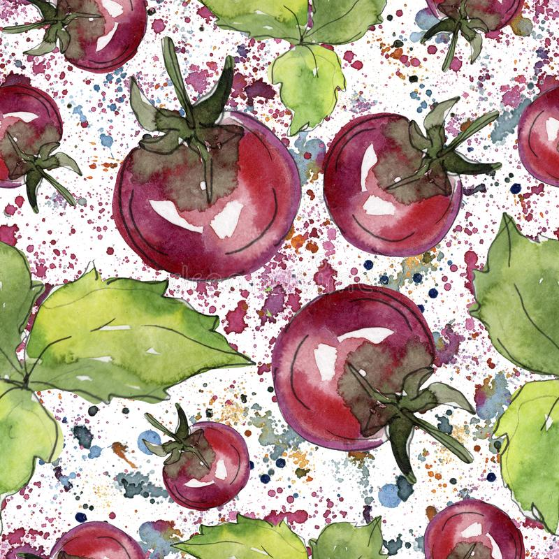 Pomidoru świeży zdrowy jedzenie Akwareli t?a ilustracji set Bezszwowy t?o wz?r royalty ilustracja