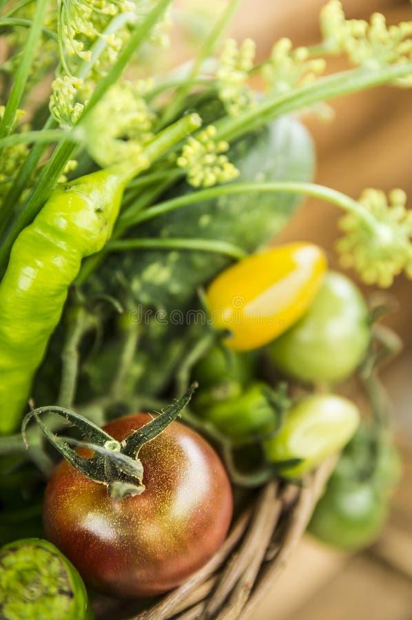 Pomidoru i zieleni warzywa w koszu zdjęcie royalty free