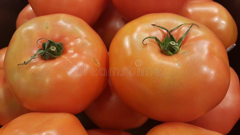 Pomidoru zbliżenia strzał obrazy stock