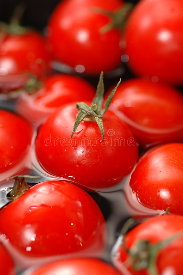 pomidory czereśniowych wody. zdjęcie royalty free