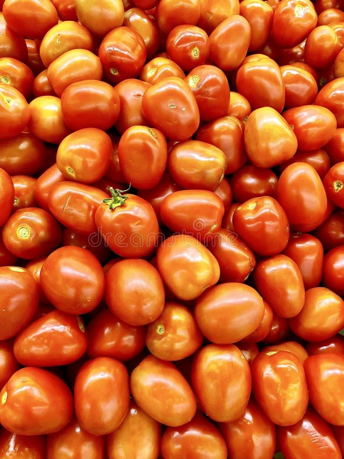 Pomidory zdjęcia royalty free