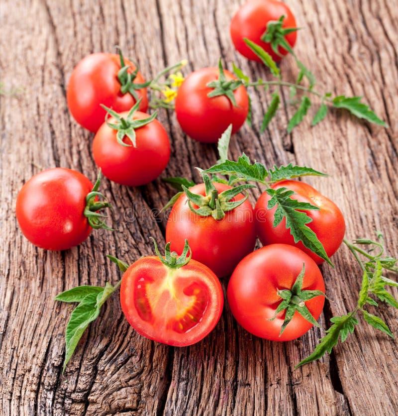 Pomidory, gotujący z ziele dla konserwaci fotografia royalty free