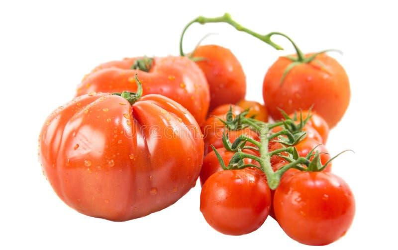 Pomidory III obraz royalty free