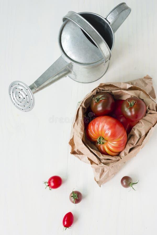 pomidory organicznych zdrowe jeść zdjęcie stock
