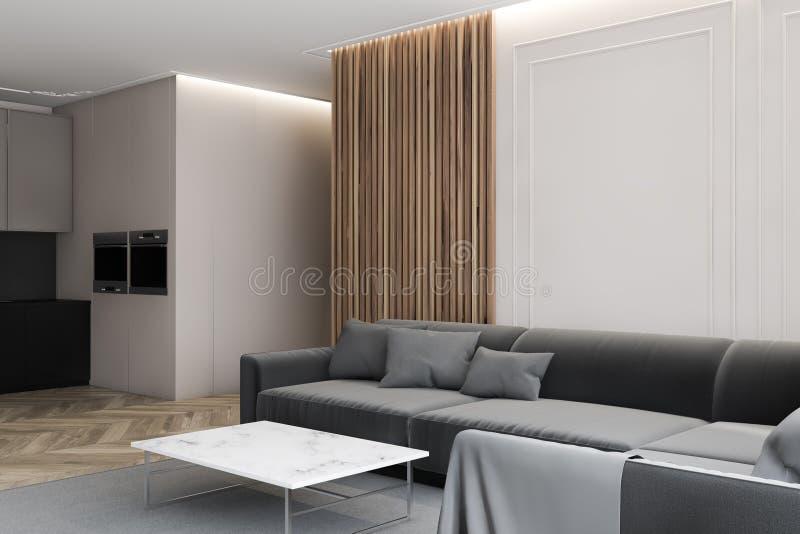 Pomieszczenie mieszkalne i pomieszczenie kuchenne ilustracji