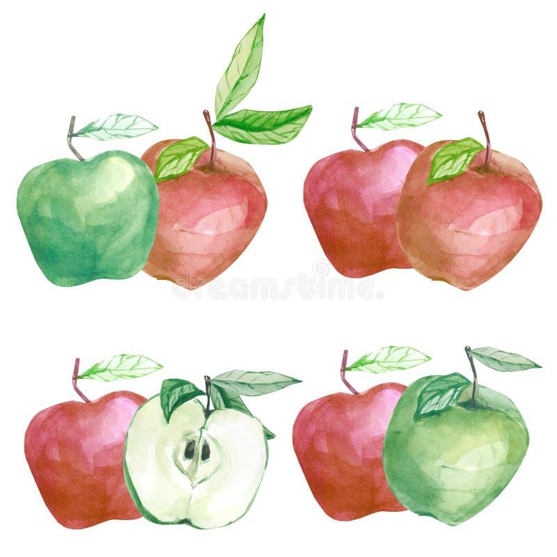 Pomme botanique de fruit d'illustration d'isolement par aquarelle Branche avec l'arragement de pomme pour épouser les cartes de v illustration de vecteur