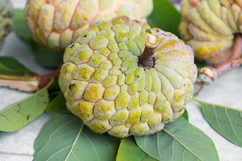 Pomme cannelle mûre sur le plancher aucun retouchez la peau, concept organique de fruits et légumes corossol, annona, pomme canne image libre de droits