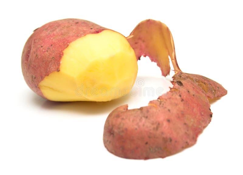 Pomme de terre 2 photo libre de droits