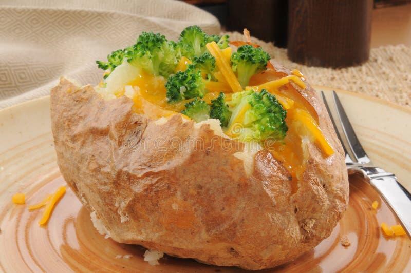 Pomme de terre cuite au four avec le brocoli et le fromage images stock