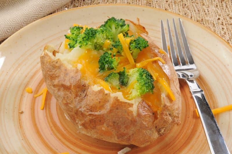 Pomme de terre cuite au four avec le brocoli et le fromage photos libres de droits