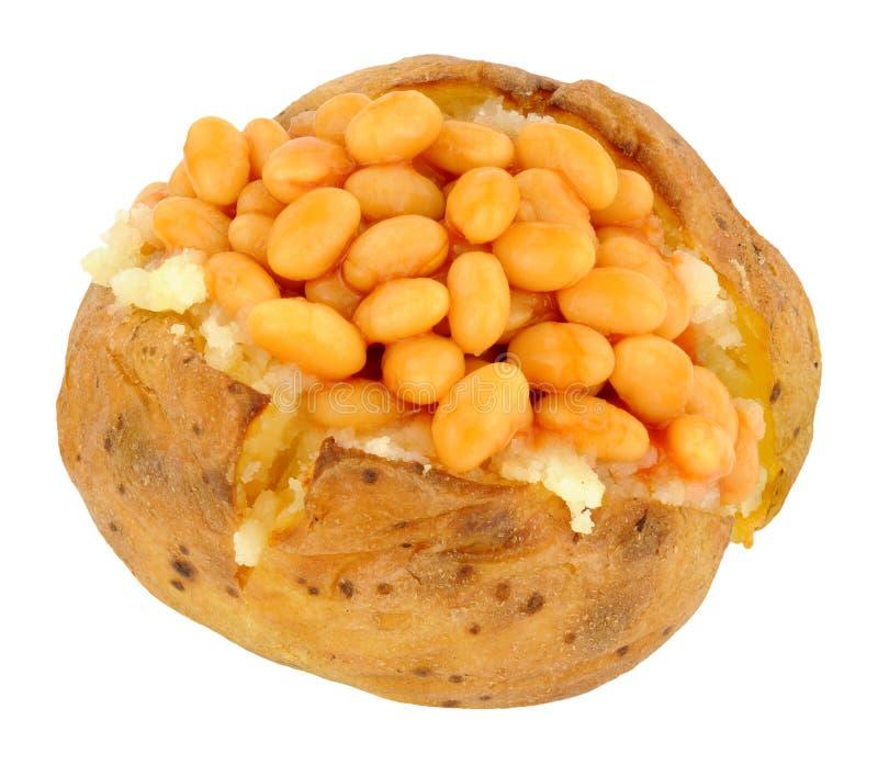 Pomme de terre cuite au four remplie de haricots cuits au four image libre de droits