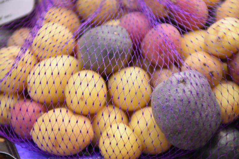 Pomme de terre d'arc-en-ciel photographie stock libre de droits