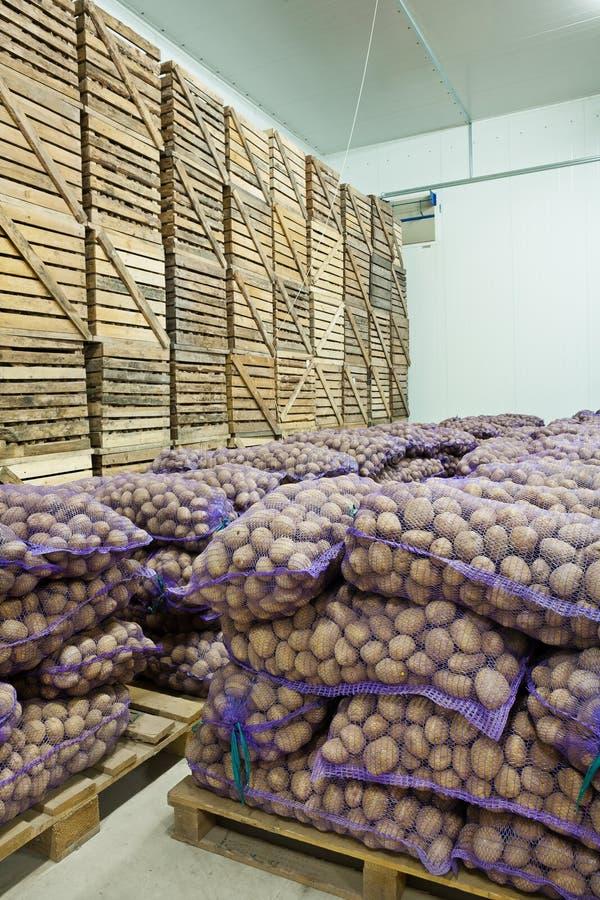 Pomme de terre dans la maison de stockage photo stock