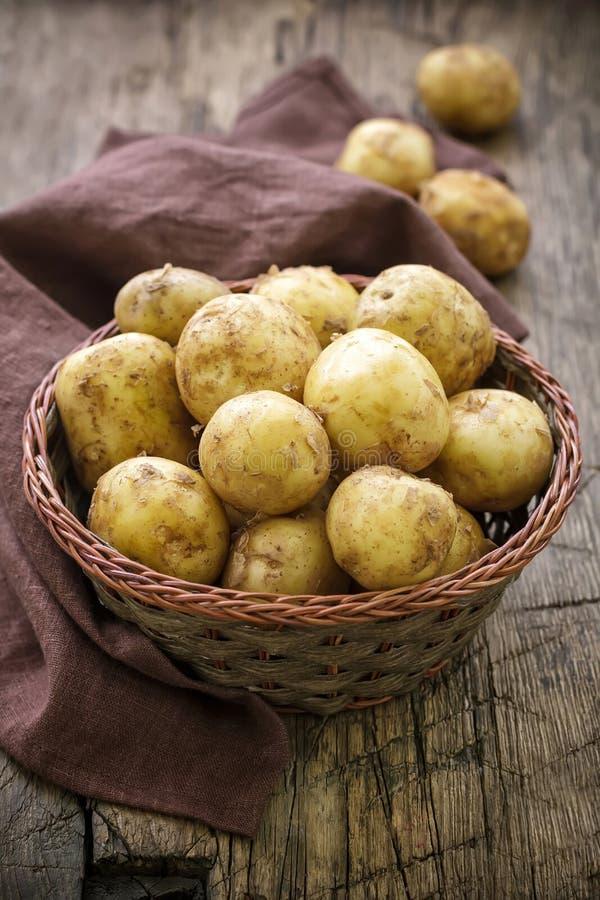 Pomme de terre de primeurs images stock