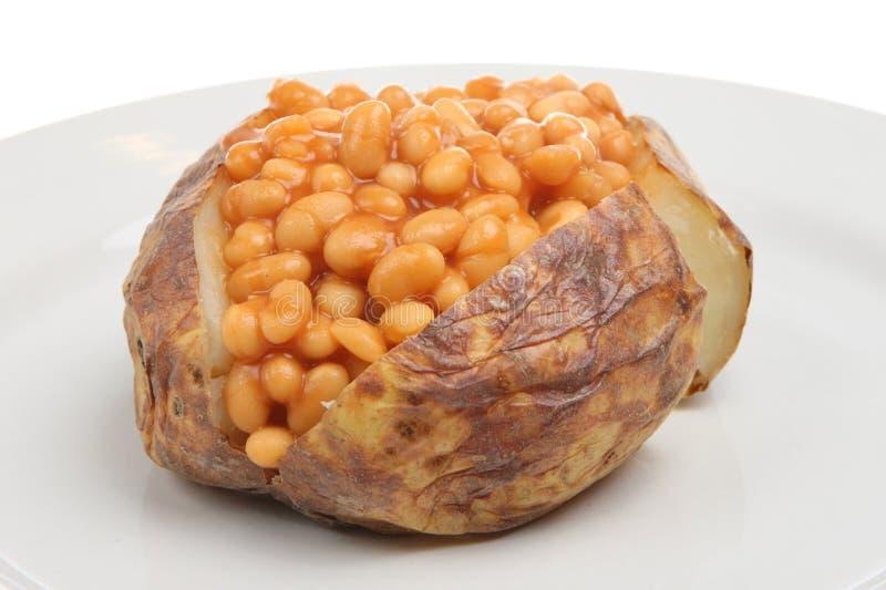 Pomme de terre en robe de chambre avec les haricots cuits au four photos stock