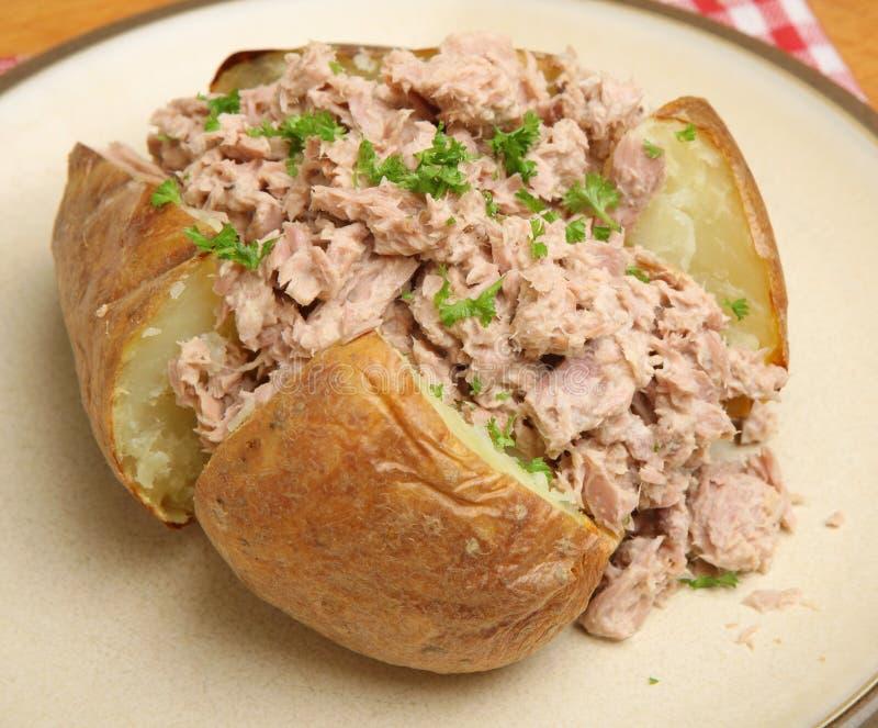 Pomme de terre en robe de chambre avec Tuna Mayonnaise photographie stock libre de droits