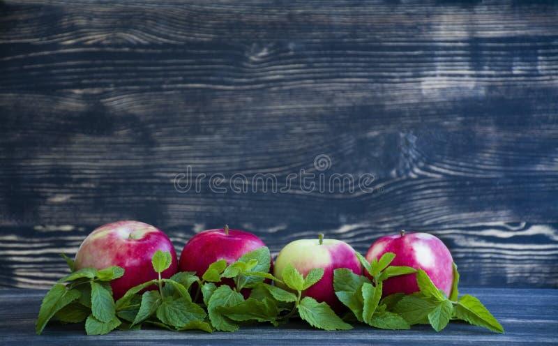 Pomme et menthe rouges sur le fond foncé image stock
