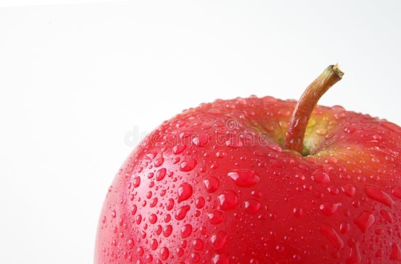 Pomme fraîche photo libre de droits