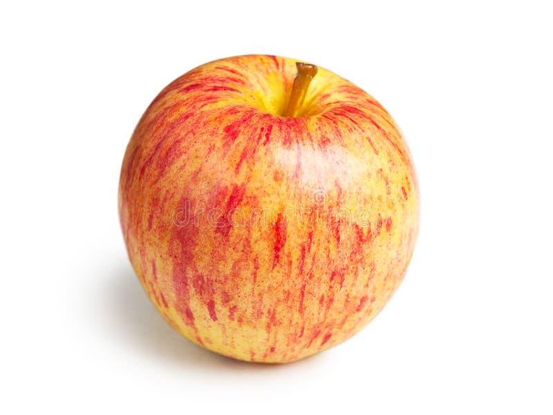 Pomme fraîche de gala image libre de droits