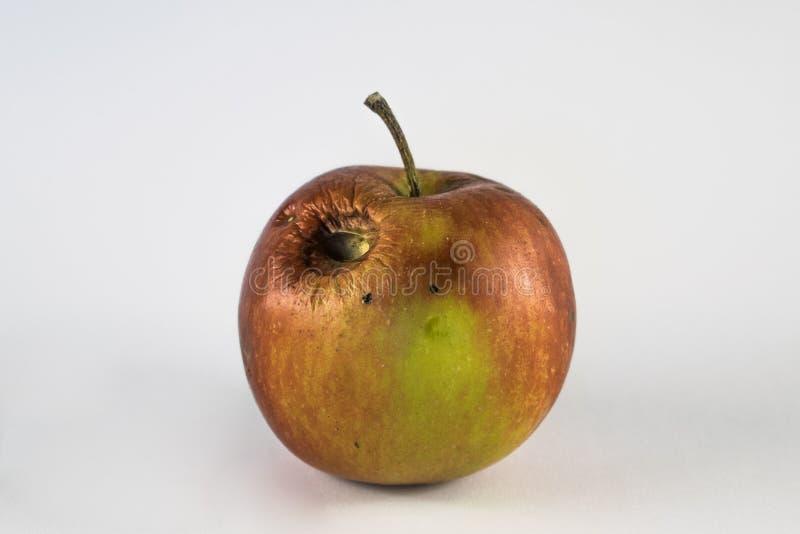 Pomme gâtée avec le trou image stock