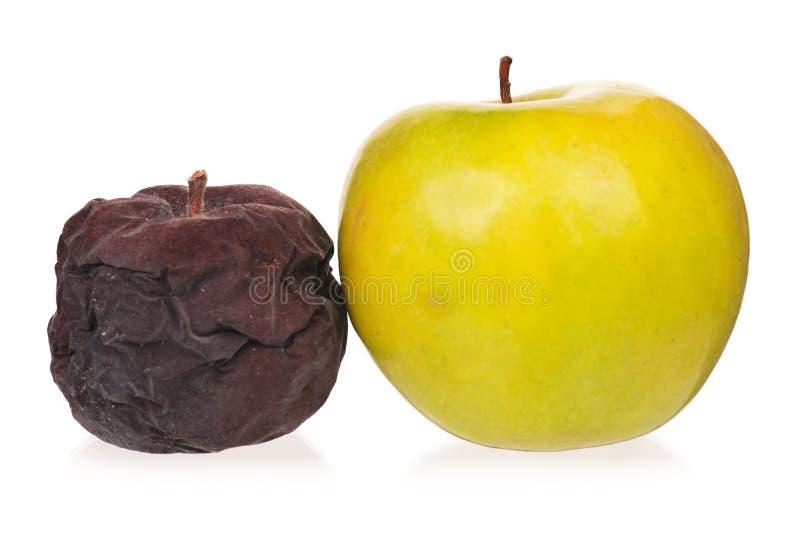 Pomme putréfiée image stock