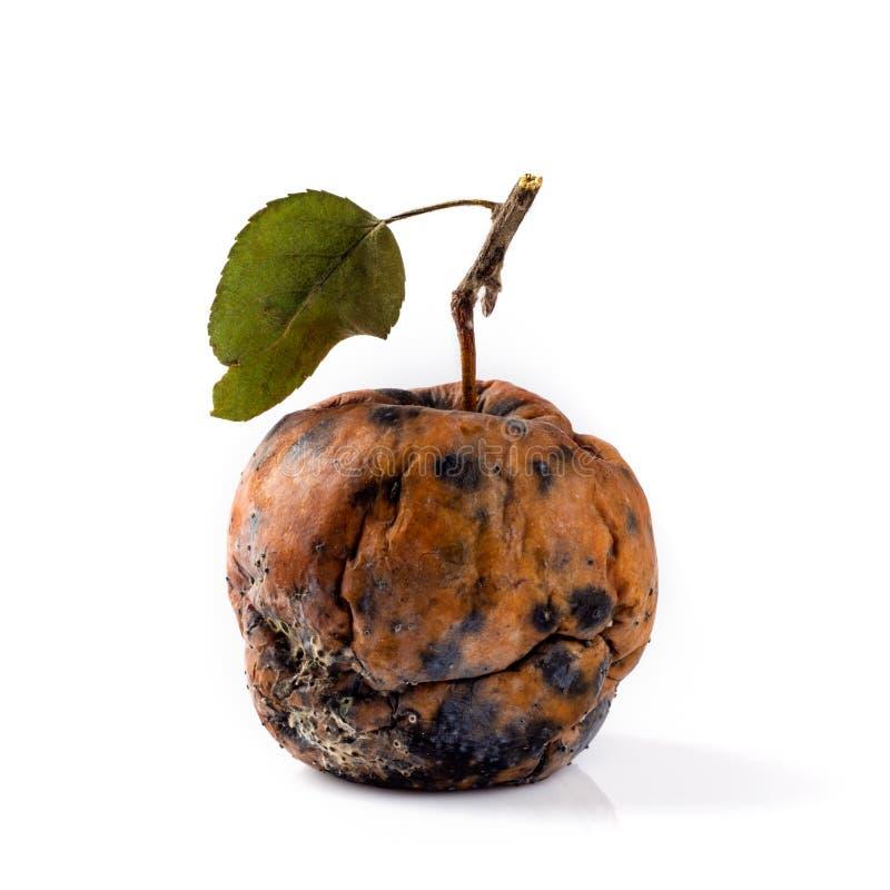 Pomme putréfiée sur un fond blanc Concept de la maladie, dégradation, tumeur maligne photos stock