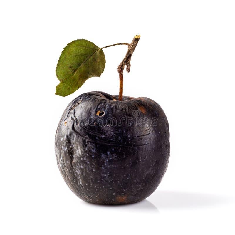 Pomme putréfiée sur un fond blanc Concept de la maladie, dégradation, tumeur maligne photos libres de droits