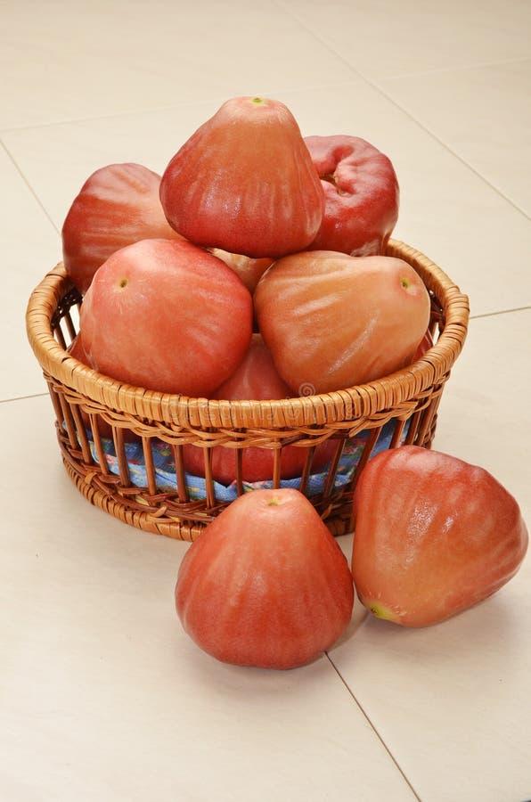 Pomme rose rouge image libre de droits