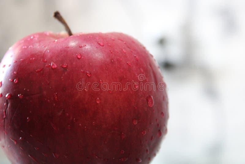 Pomme rouge avec des baisses de l'eau photographie stock libre de droits