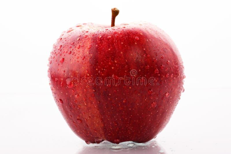 Pomme rouge avec des gouttes de l'eau image stock