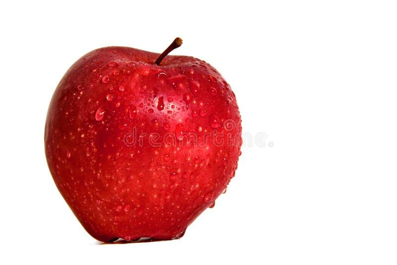 Pomme rouge dans des baisses de l'eau sur un fond blanc image stock