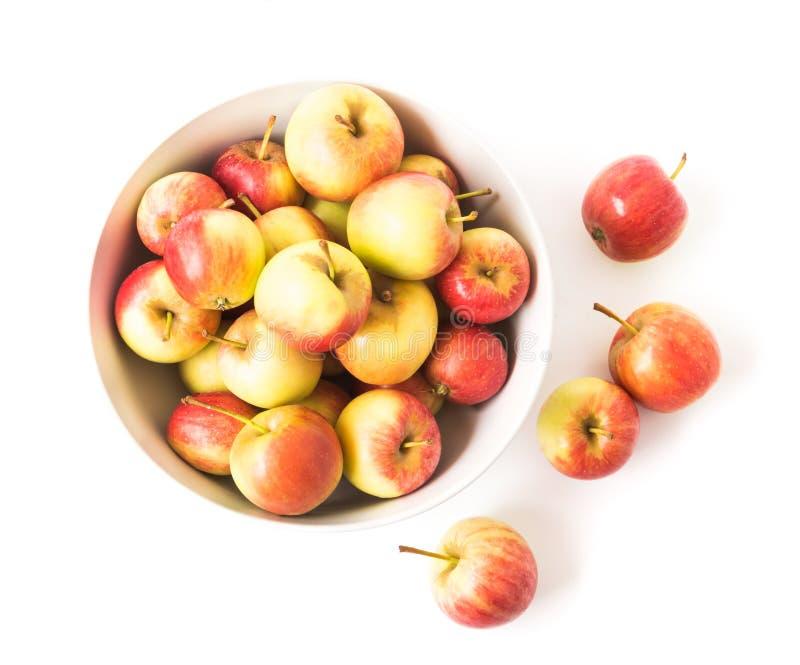 Pomme rouge de vue supérieure de plan rapproché sur la cuvette blanche avec le fond blanc, images libres de droits