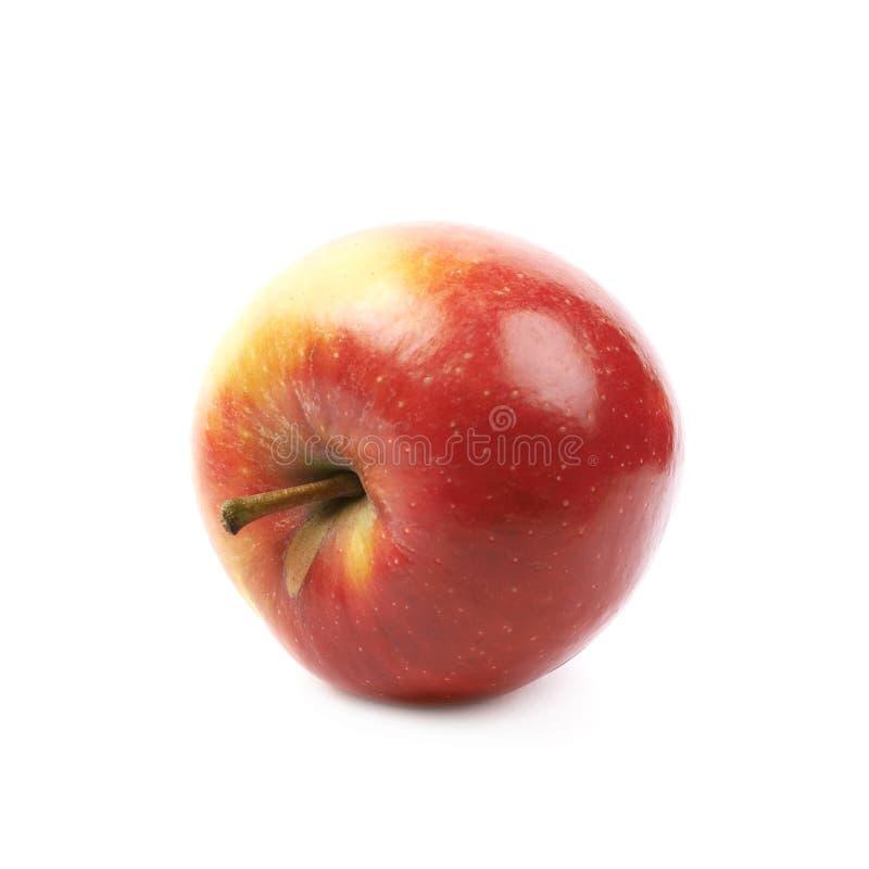 Pomme rouge et d'or mûre de jonagold image stock