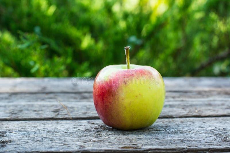 Pomme rouge et jaune mûre sur la table en bois Apple dans le jardin Concept végétarien D'automne de récolte toujours nourriture d image stock
