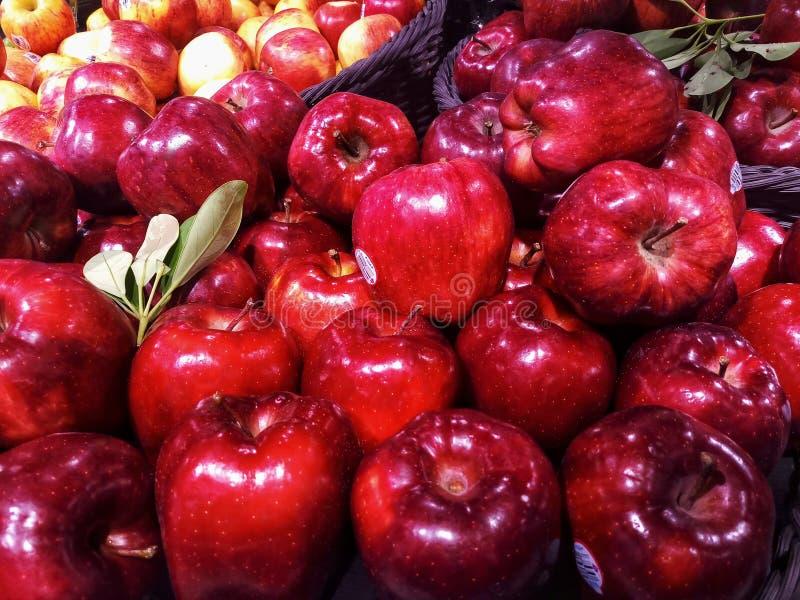 Pomme rouge photographie stock libre de droits