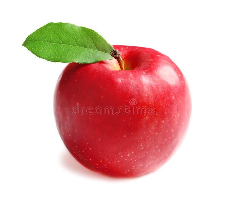 Pomme rouge mûre sur le fond images stock