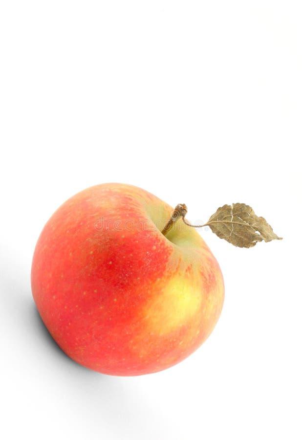 Pomme savoureuse avec la lame sèche sur le blanc photo stock