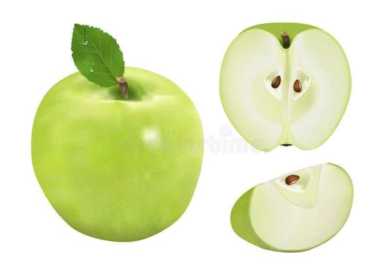 Pomme verte mûre avec la feuille, moitié, tranche d'isolement sur un détail élevé d'illustration réaliste blanche du fond 3d Vect illustration libre de droits