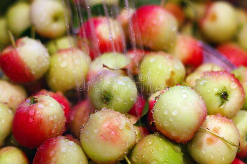 Pommes étant lavées photographie stock libre de droits