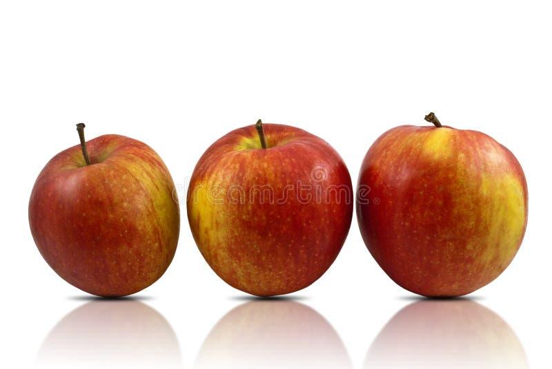 Pommes images stock